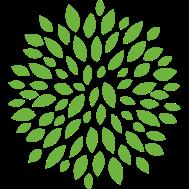 Leaf_Circle